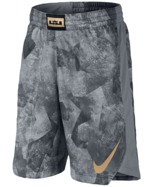 Nike Drifit LeBron James Shorts Big Boys (820)
