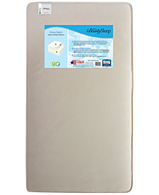 Beautysleep Kids Crib & Toddler Mattress