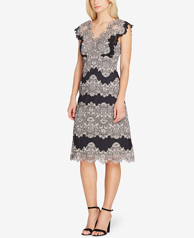 Tahari ASL Scalloped Lace Stripe Dress