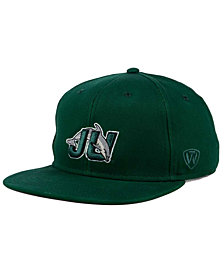 Top of the World Jacksonville Dolphins League Snapback Cap