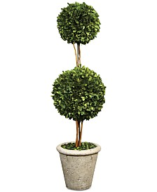 Uttermost Preserved Boxwood Two Sphere Topiary