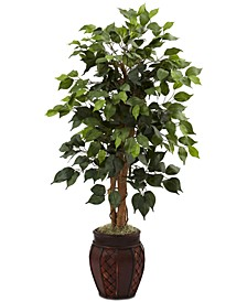 "44"" Ficus Tree with Decorative Planter"