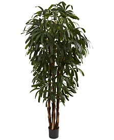 Nearly Natural 6' Raphis Palm Tree