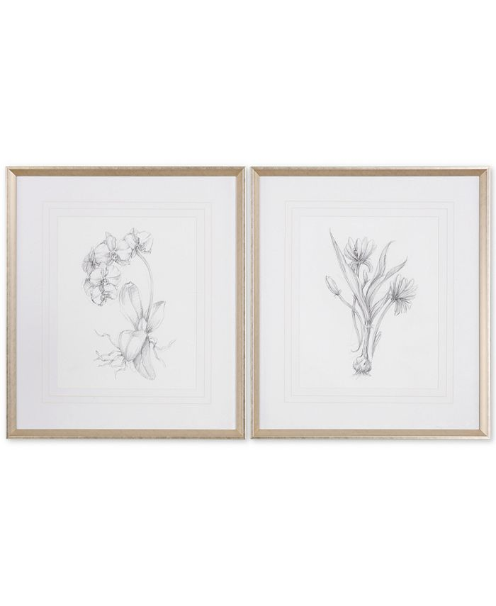 Uttermost - Botanical Sketches 2-Pc. Framed Print Wall Art Set
