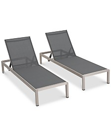 Reseda Chaise Lounge (Set of 2), Quick Ship