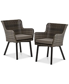 Lionel Outdoor Arm Chair (Set of 2)