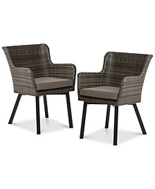Lionel Outdoor Arm Chair (Set of 2), Quick Ship