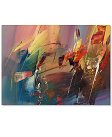 "Ricardo Tapia 'Garden' Canvas Art - 47"" x 35"""