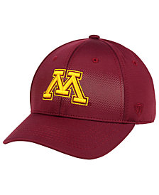Top of the World Minnesota Golden Gophers Life Stretch Cap