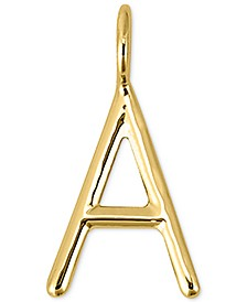 Amelia Mini Initial Charm in 14k Gold