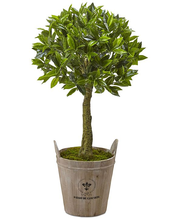 """Nearly Natural 38"""" Sweet Bay Artificial Topiary with European Barrel Planter"""