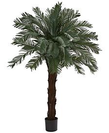 6' Cycas UV-Resistant Indoor/Outdoor Artificial Tree