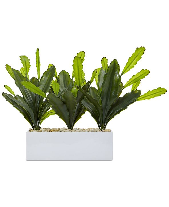 Nearly Natural Cactus Artificial Plant in Rectangular Planter