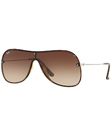 Ray-Ban Sunglasses, RB4311N