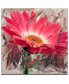 Ready2HangArt 'Painted Petals XLIII' Canvas Wall Decor