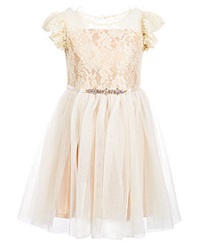Pink & Violet Little Girls Ruffle-Trim Lace Dress