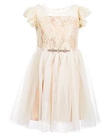 Pink & Violet Little Girls Ruffle-Trim Lace Dress