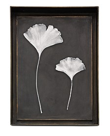 Ginkgo Leaf Shadow Box