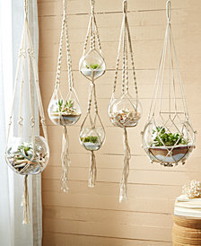 Set of 5 HandCrafted Macramé Plant Hangers
