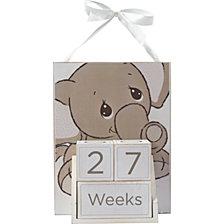Milestones Elephant Baby Age Photo Prop Block Set