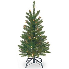 National Tree 3' Kingswood Fir Wrapped Pencil Tree with 50 Clear Lights