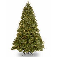 "National Tree 6 .5' ""Feel Real"" Downswept Douglas Fir Hinged Tree with 650 Clear Lights"