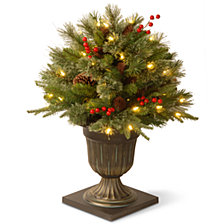 "National Tree 24"" ""Feel Real"" Colonial Porch Bush with Cones, Red Berries 50 Clear Lights"
