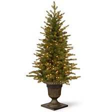 """National Tree 4' """"Feel Real"""" Nordic Spruce Entrance Tree with 100 Clear Lights"""