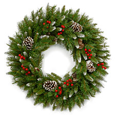 "National Tree Company 24"" Frosted Berry Wreath"