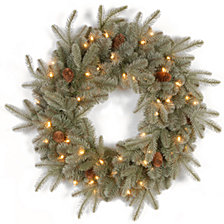 "National Tree Company 24"" ""Feel Real"" Frosted Artic Spruce Wreath with Cones & 50 Clear Lights"