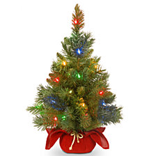 "National Tree Company 24"" Majestic Spruce Tree in Burgundy Cloth Bag with 35 Multi Battery Operated LED Lights"