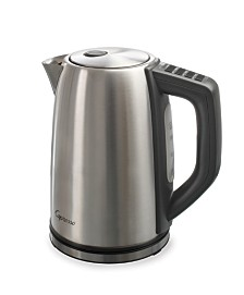 Capresso H2O Steel Plus Tea Kettle