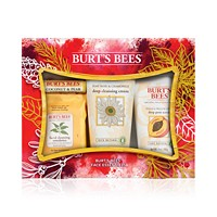 Burt's Bees 4 Piece Face Essentials Gift Set