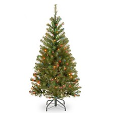 National Tree 4' Spruce Tree with 100 Multicolor Lights