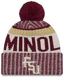 Florida State Seminoles Sport Knit Hat
