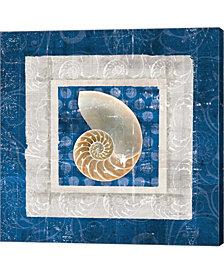 Sea Shell II on Blue by Belinda Aldrich Canvas Art