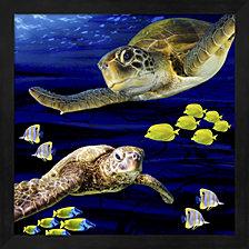 Sea Creatures Turtle By Lightboxjournal Framed Art