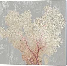 Blush Coral I by Aimee Wilson Canvas Art