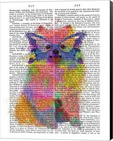 Rainbow Splash Pomeranian By Fab Funky Canvas Art