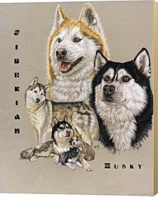 Siberian Husky By Barbara Keith Canvas Art