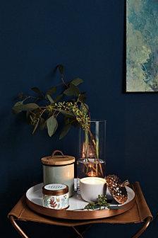 Illume Harvest Collection