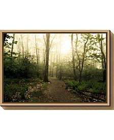 Appalachian Trail by Andy Magee Canvas Framed Art