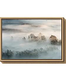 Winter fog by Marco Galimberti Canvas Framed Art