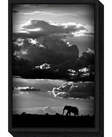 He walks under an African Sky by Wildphotoart Canvas Framed Art