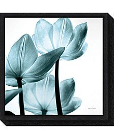 Translucent Tulips III Aqua by Debra Van Swearingen Canvas Framed Art