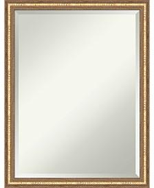 Amanti Art Dixie Rustic 18x22 Wall Mirror