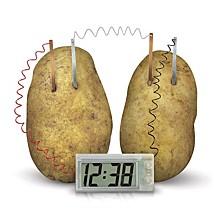 4M Green Science Potato Clock Kit