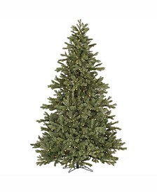 7.5 ft Frasier Fir Artificial Christmas Tree With 750 Warm White Led Lights