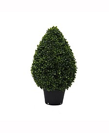 "24"" High X 15"" Wide Boxwood Teardrop Shaped Bush Is Uv Resistant"