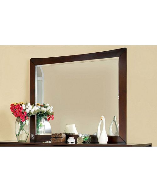 Furniture of America Ownby Transitional Mirror